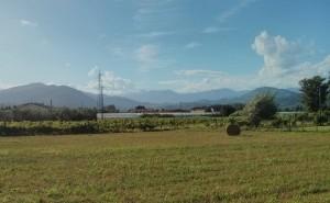 Una corte ed un'azienda agricola lungo il tracciato dell'Asse Nord-Sud