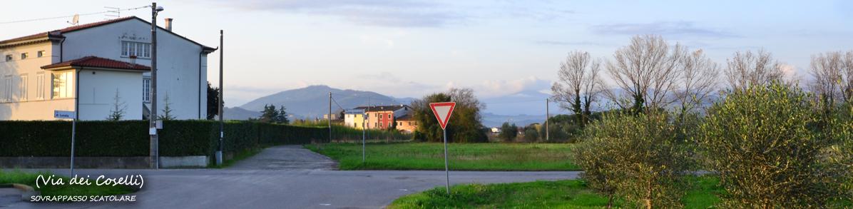 ViadeiCoselli