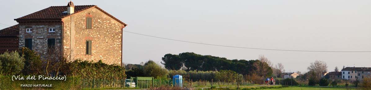 ViadelPinaccio