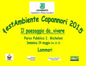 Manifesto Festambiente Capannori 2015