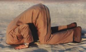 struzzo sotto la sabbia
